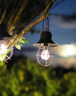 Lampor och Lyktor