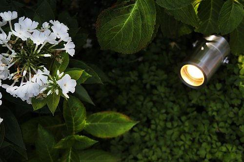 Spot lights  for all your trees and bushes