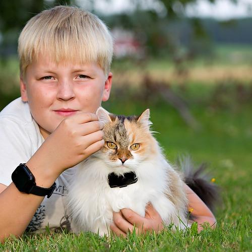 Direkt till vår GPS för Katt minsta GPS halsbandet för katt