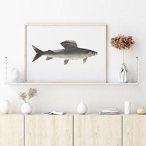 Fiskmotiv  Se mer