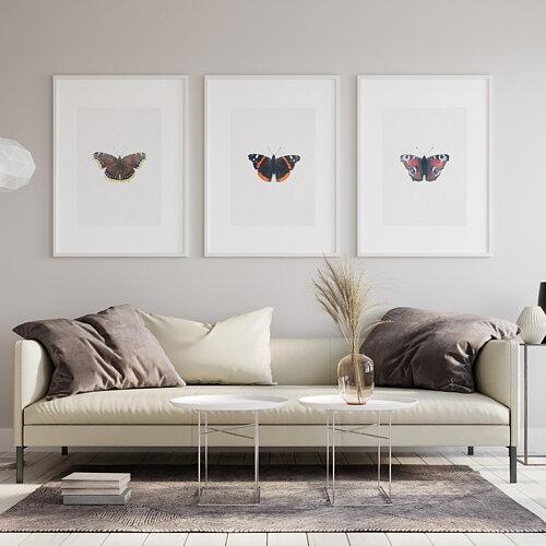 Fjärilar  SHOPPA NU