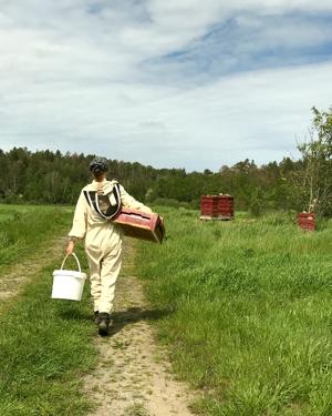 Ät svensk honung och visa att även du bryr dig om vår svenska natur! Visste du att bin ger rikare skördar, fler blommor och mer surr i buskarna? 1/3 av allt du äter är pollinerat av ett bi!