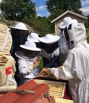 Bisafari & Föreläsningar Är du nyfiken på binas värld och biodling? Läs mer här!