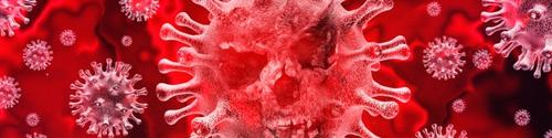 Coronavirus har nu ett starkt grepp om det offentliga livet i Sverige. Skolor stängs, sportevenemang avbryts, antalet nya infektioner inom EU ökar drastiskt. Av denna anledning har vi beslutat att stänga vårt kontor och showroom för besökare närvarande tills vidare. Detta tjänar säkerheten för våra kunder och naturligtvis för teamet på Nagges sportvapen Frakten fortsätter för tillfället som normalt, men det kan inte uteslutas att längre leveranstider kan förekomma för varor som för närvarande inte finns i lager.