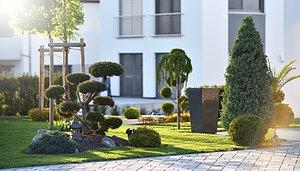 Sätt färg på din trädgård  Visa växter