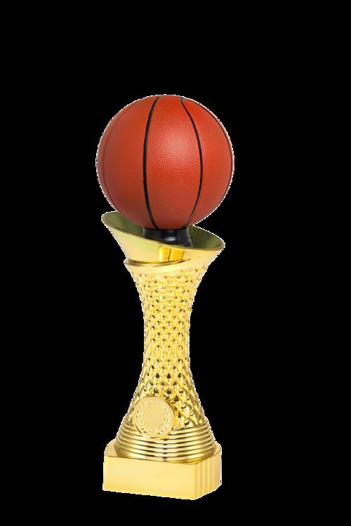 Vi kan Basket - Kontakta oss för priser till turneringar och avslutningar